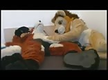 Lion and Fox Plushie Sex