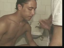 Latino toilet sex