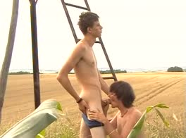 2 boys fuck in the cornfields