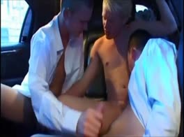 SECRETS IN LIMO