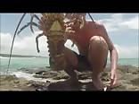HOT AUSSIE BOY SPEARFISHING A CRAYFISH