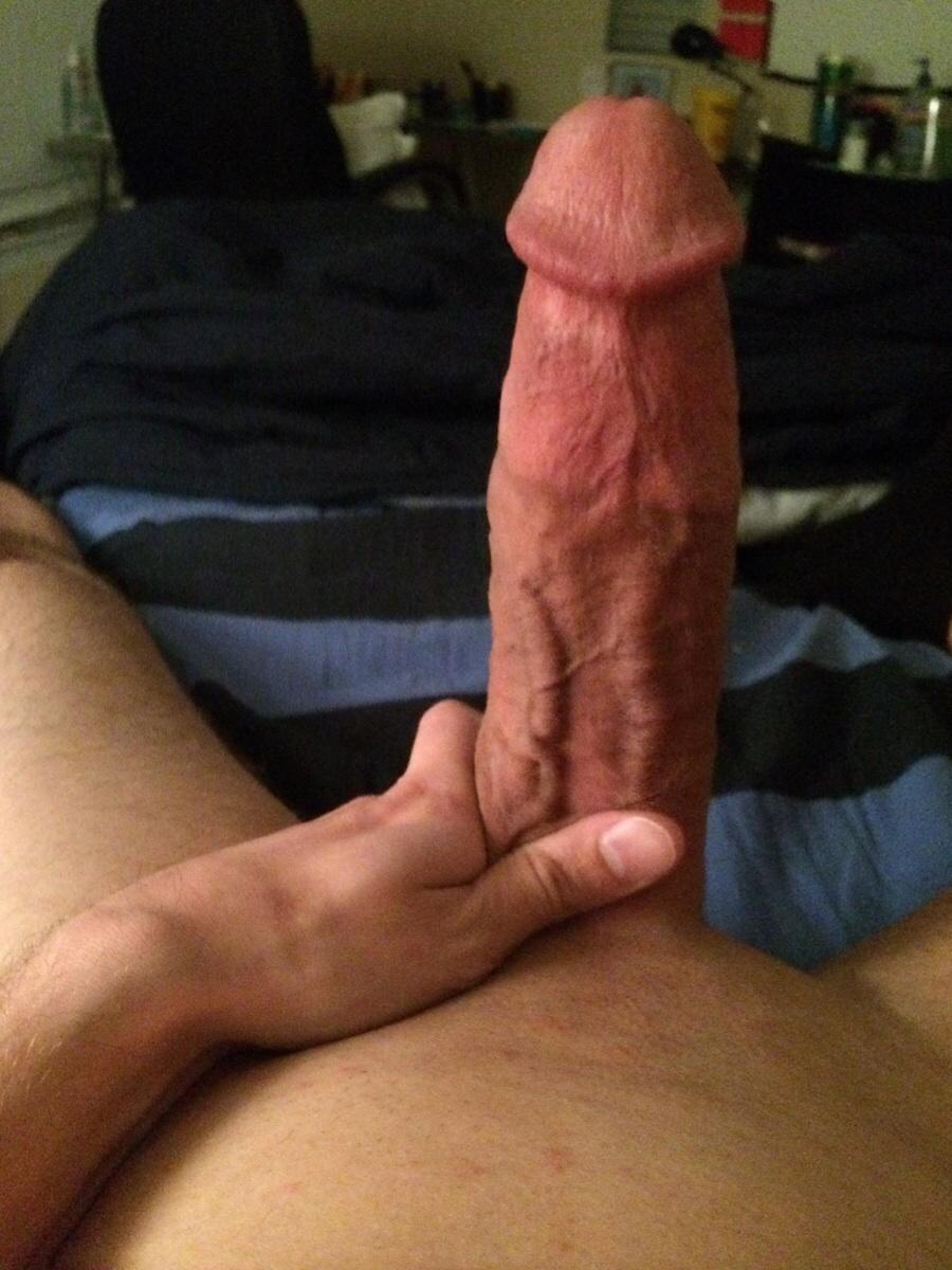 Dad Breeds Huge Latino Cocks Bareback Gay Tumblr Dick Anal