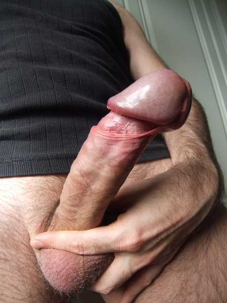Twinks gay sex free download xxx sexy 2