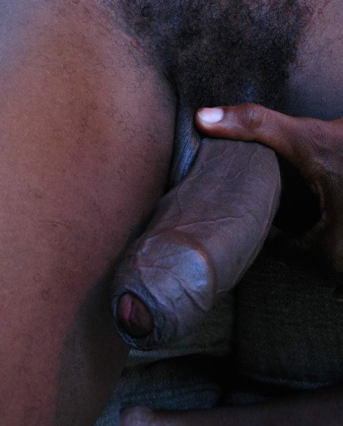 Ebony shemale aniyah fucking guys