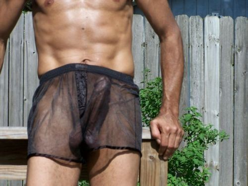 sensual transparencies