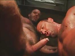 Daddys Boy 3
