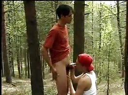 Twinks Relaxation in the forest