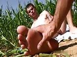 In My Corn Field, I Find...