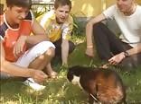 ANAIS : TEEN GAY PORN YOUNG GROUP SEX BOYS 3049